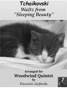 Walzer: For woodwind quintet by Pjotr Tschaikowski