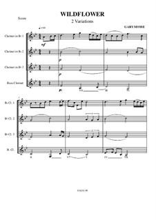 Wildflower-Variations: Wildflower-Variations by Gary Mosse