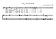 Der Wiederhall: Der Wiederhall by Ernst Richter
