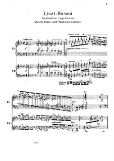 Grosse Etüden nach Paganini, S.141: Nr.2 in Es-Dur (Herausgegeben von Busoni) by Franz Liszt