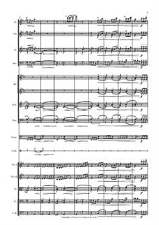No.20 The Old Witch (Baba-Yaga): Arrangement for symphony orchestra by Pjotr Tschaikowski