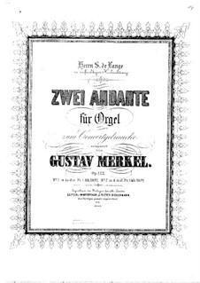 Zwei Andante für Orgel, Op.122: Zwei Andante für Orgel by Gustav Adolf Merkel