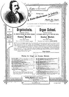 Sonate für Orgel Nr.7 in a-Moll, Op.140: Sonate für Orgel Nr.7 in a-Moll by Gustav Adolf Merkel