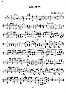 Andantino in G Major: Andantino in G Major by Johann Kaspar Mertz