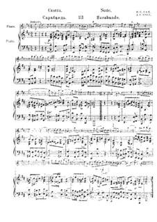 Orchestersuite Nr.2 in h-Moll, BWV 1067: Sarabande, für Flöte und Klavier by Johann Sebastian Bach