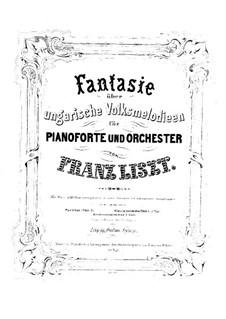 Fantasie über ungarische Volksmelodien, S.123: Für Klavier by Franz Liszt