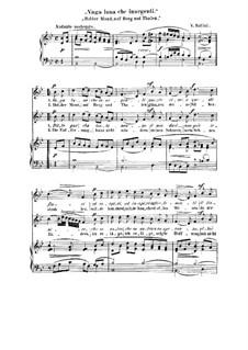 Holder Mond, auf Berg und Thalen: Für zwei Stimmen und Klavier by Vincenzo Bellini