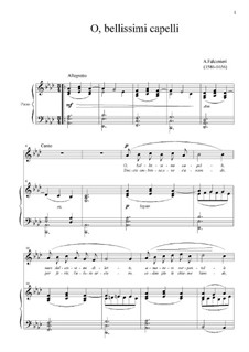 O bellissimi capelli: For voice and piano (f-moll) by Andrea Falconieri