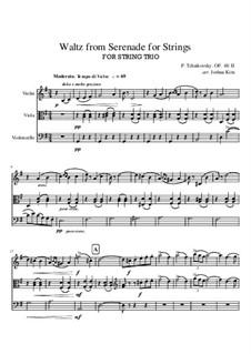 Serenade für Streichorchester, TH 48 Op.48: Movement II (Waltz), for string trio by Pjotr Tschaikowski