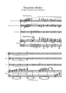 Neapolitan Medley: For flute, bandoneon, bass and piano by Ernesto de Curtis, Salvatore Cardillo, Teodoro Cottrau