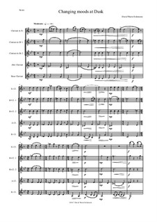 Changing moods at dusk: For clarinet quintet (E flat, 2 B flats, Alto, Bass) by David W Solomons
