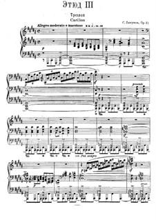 Zwölf transzendentale Etüden, Op.11: Nr.3 Carillon by Sergei Lyapunov