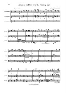Blow away the morning dew: Variations, for clarinet trio by folklore