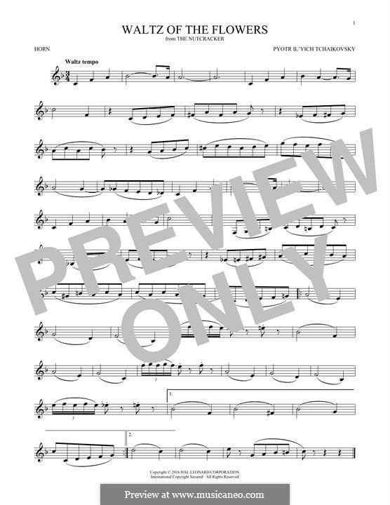 Nr.8 Blumenwalzer: For horn by Pjotr Tschaikowski