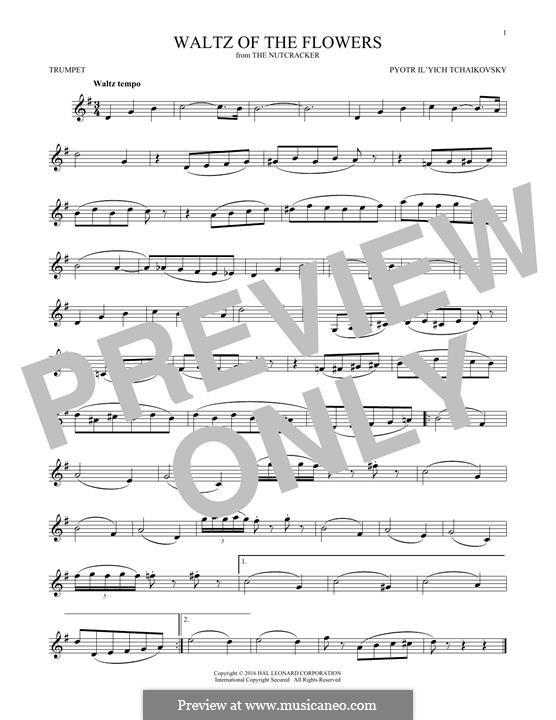 Nr.8 Blumenwalzer: Für Trompete by Pjotr Tschaikowski