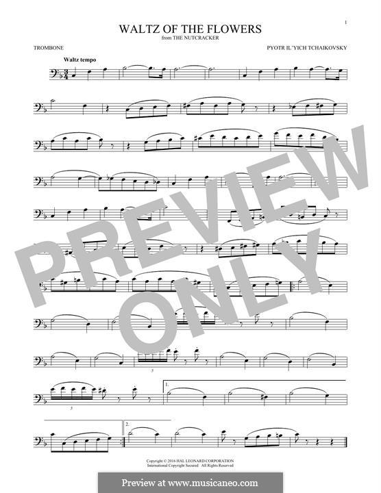 Nr.8 Blumenwalzer: For trombone by Pjotr Tschaikowski