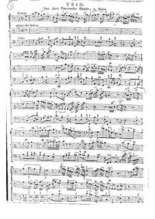 Sonate für Bratsche und Basso Continuo in B-Dur: Sonate für Bratsche und Basso Continuo in B-Dur by Johann Gottlieb Graun