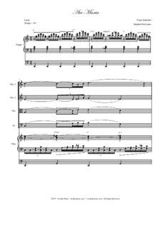 Ave Maria, D.839 Op.52 No.6: For string quartet - organ accompaniment by Franz Schubert