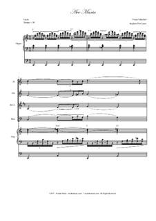 Ave Maria, D.839 Op.52 No.6: For woodwind quartet - organ accompaniment by Franz Schubert