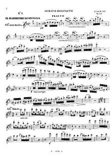 Fantasie über Themen aus 'Der Barbier von Sevilla' von Rossini, Op.157: Flötenstimme by Emmanuele Krakamp