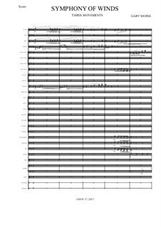 Symphony of Winds: Symphony of Winds by Gary Mosse