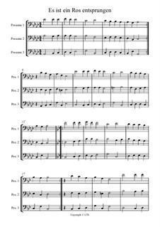 Es ist ein Ros entsprungen: For trio instruments by Michael Praetorius