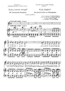 O, du, Säufer: Russische und deutsche Texte by Modest Mussorgski