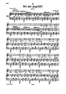 Sei mir gegrüsst, D.741 Op.20 No.1: Für tiefe Stimme und Klavier by Franz Schubert