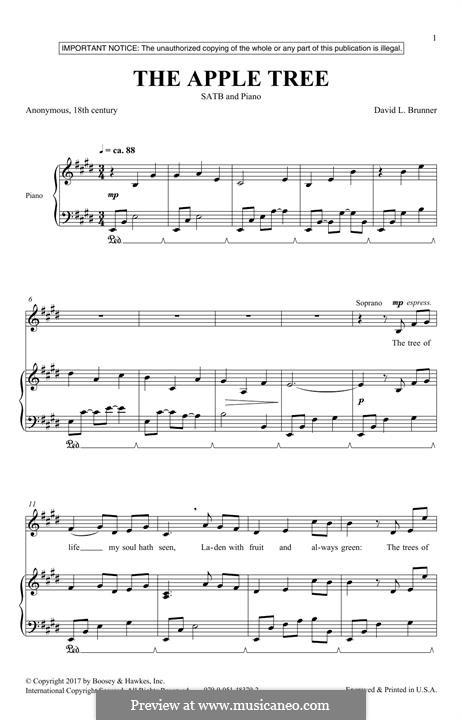 The Apple Tree: Für gemischten Chor by David L. Brunner