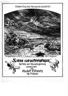 Sturmwind, Op.51: Sturmwind by Rudolf Tillmetz
