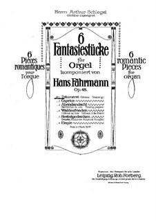 Träumerei, Op.48 No.1: Träumerei by Hans Fährmann