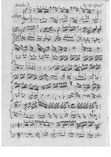 Sonate für Flöte und Basso Continuo Nr.3: Sonate für Flöte und Basso Continuo Nr.3 by Christian Ernst Graf