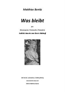 Was bleibt: Was bleibt by Matthias Bonitz