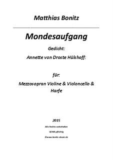 Mondesaufgang: Mondesaufgang by Matthias Bonitz