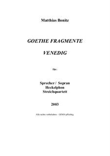 Goethe Fragmente: Goethe Fragmente by Matthias Bonitz