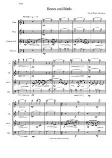 Bones and Birds for wind quartet: Bones and Birds for wind quartet by David W Solomons