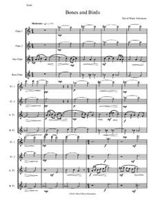 Bones and Birds: Für Flötenquartett by David W Solomons