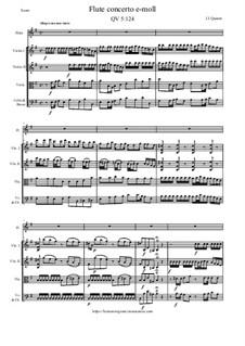 Concerto for Flute and Orchestra No.95, QV 5:124: Concerto for Flute and Orchestra No.95 by Johann Joachim Quantz