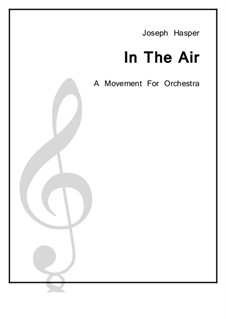 In The Air: In The Air by Joseph Hasper