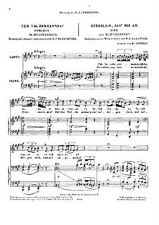 Sternlein, Sag' mir an: Erste Fassung by Modest Mussorgski