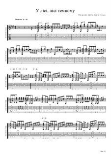 Im dunklen Wald (fingerstyle guitar): Im dunklen Wald (fingerstyle guitar) by folklore
