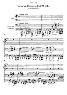 Fantasie über ungarische Volksmelodien, S.123: Für zwei Klaviere, vierhändig by Franz Liszt