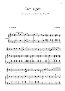 Don Pasquale: Come gentil... Serrenata di Ernesto by Gaetano Donizetti