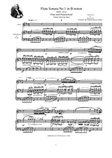 Sonate für Violine und Cembalo Nr.1 in h-Moll, BWV 1014: Arrangement for flute and harpsichord (or piano) by Johann Sebastian Bach