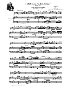 Sonate für Violine und Cembalo Nr.2 in A-Dur, BWV 1015: Arrangement for flute and harpsichord (or piano) by Johann Sebastian Bach