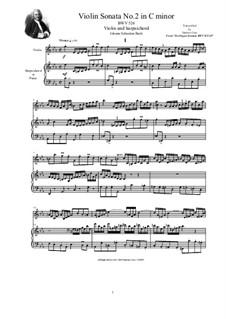 Triosonate für Orgel Nr.2 in c-Moll, BWV 526: Version for violin and harpsichord (or piano) by Johann Sebastian Bach