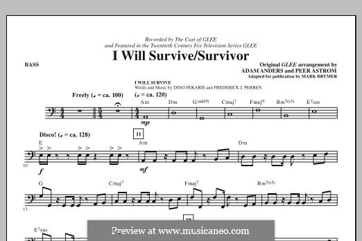 I Will Survive / Survivor (Glee Cast): Bassstimme by Adam Anders, Peer Åström