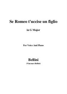 Die Capulets und die Montague: Se Romeo t'uccise un figlio by Vincenzo Bellini