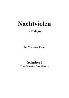 Nachtviolen, D.752: E Major by Franz Schubert