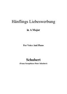 Hänflings Liebeswerbung, D.552 Op.20 No.3: Für Stimme und Klavier (A Major) by Franz Schubert